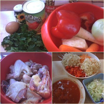 ciorba-moldoveneasca-de-gaina-2-ingrediente