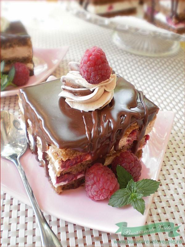 prajitura-cu-ciocolata-si-zmeura