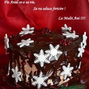 La Multi Ani 2013!!
