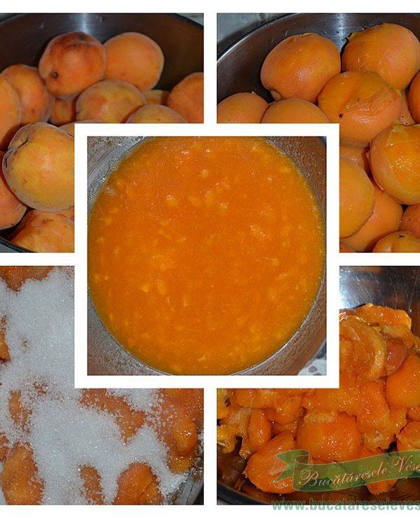 preparare-dulceata-caise-la-rece-11